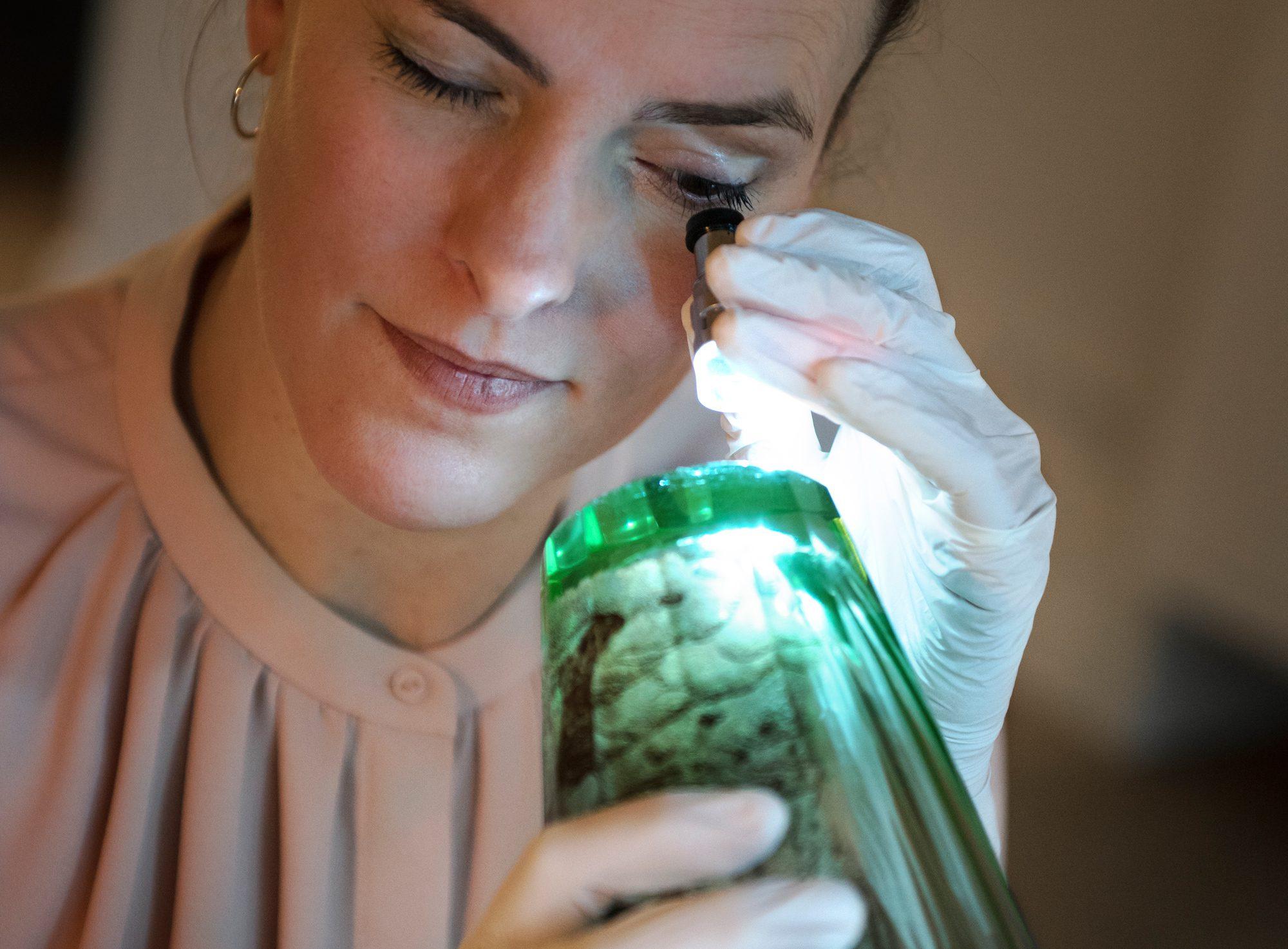 Dr. Verena Wasmuth